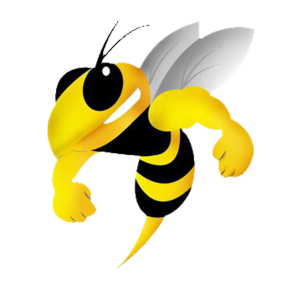 Coventry Bees